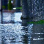 flood insurance claim success